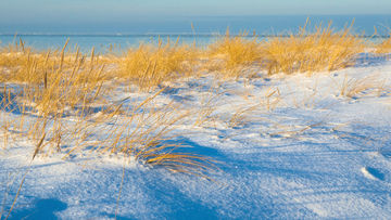 Ahrenshoop Winter